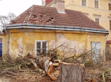 rizikové kácení – při kácení starých stromů se jedná téměř vždy o kácení rizikové, nejdůležitější je stromy nepodceňovat, park Zdechovice