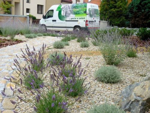 Zahrada s cestičkami