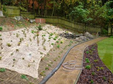 protierozní síť, splavení rostlin, rekonstrukce, zahrada