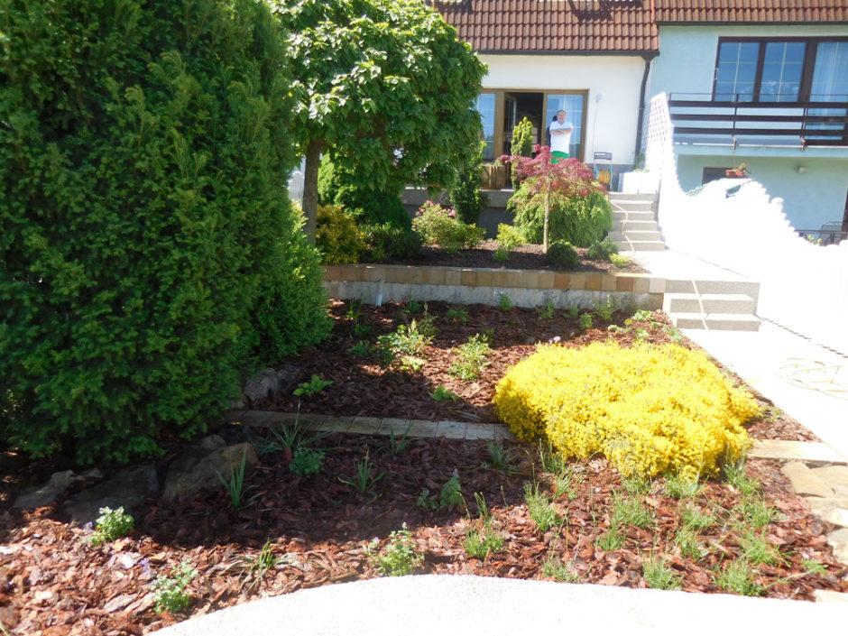 Impulsem k rekonstrukci zahrady byla její složitá údržba a neestetičnost, zároveň jsme se ale snažili některé rostliny zachovat.